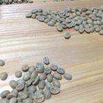 【趣味の世界】大阪でコーヒーの生豆が買える実店舗。raw coffee beans in Osaka.